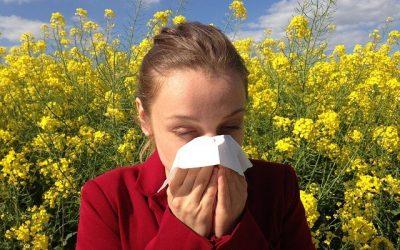 Spiritual Cause of Hay Fever