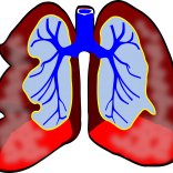Asthma: The Emotional Cause