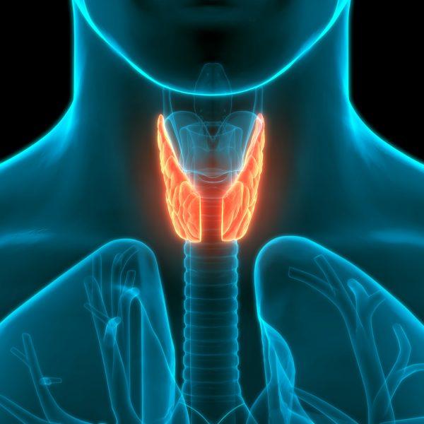 spiritual cuase of thyroid